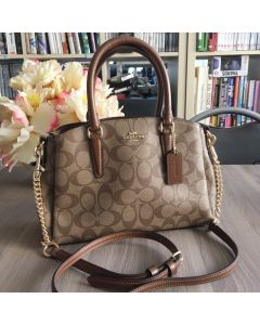 COACH F29434 MINI SAGE CARRY ALL SADDLE IN SIGNATURE